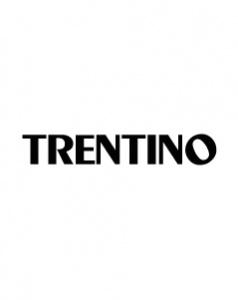 Logo TRENTINO ONLINE